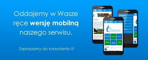Wersja mobilna