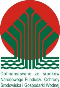 logo_kolor_dofinansowano_pl