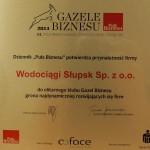 gazela_za2013